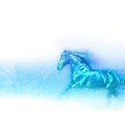 Equus by Wendy  Slee
