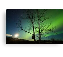 Yukon Northern Lights 2 Canvas Print