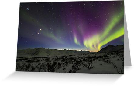 Yukon Northern Lights 3 by Phil Hart
