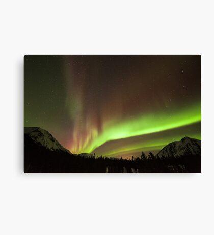Yukon Northern Lights 4 Canvas Print