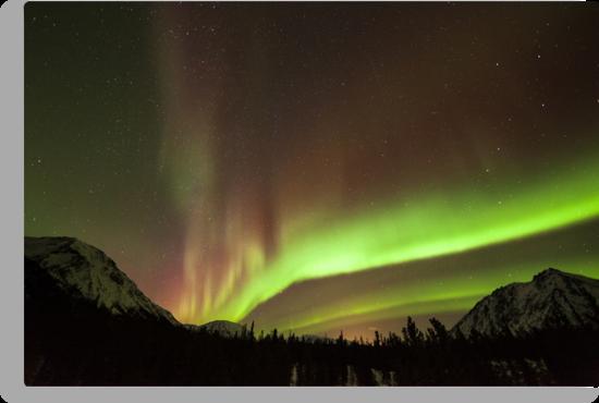 Yukon Northern Lights 4 by Phil Hart