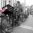Bike, Amsterdam by Nick Coates