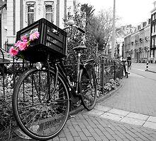 Bike, Amsterdam by Nicholas Coates