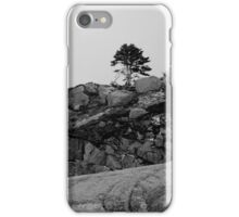 Scotian Coast iPhone Case/Skin