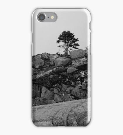 Scotian Coast iPhone Case/Skin