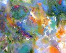 Porthole (Agatized Jasper) by Stephanie Bateman-Graham