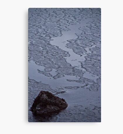 Cracking Canvas Print