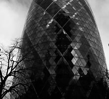 The Gherkin by Iain McGillivray