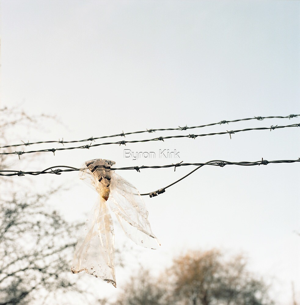 Barbed wire by Byron Kirk