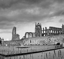 Whitby Abbey 3 by jasminewang