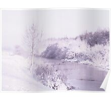 Winter in lavender... Poster