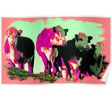 Radical Moo Cows Poster