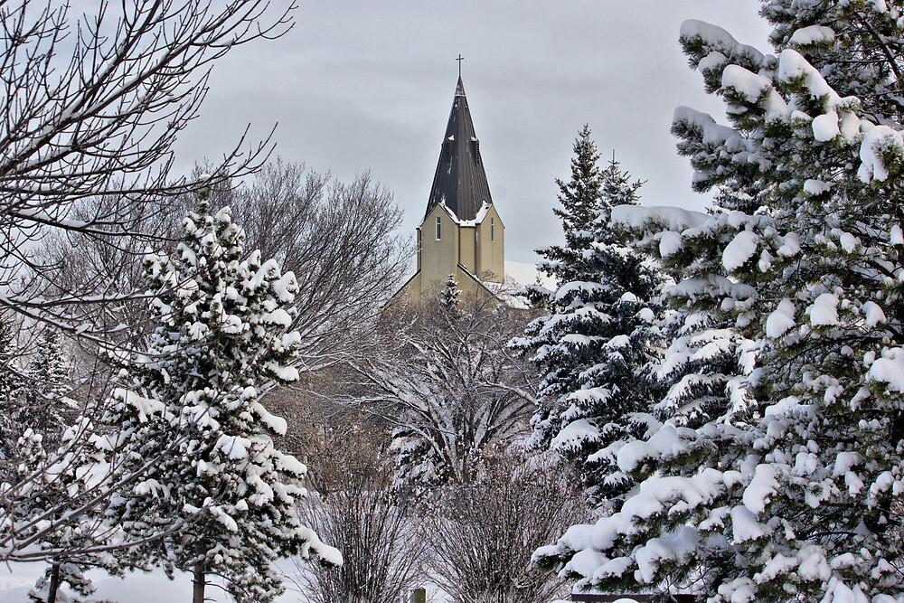 Winter by Michelle Burton