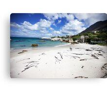 South Africa - Boulders Beach Canvas Print