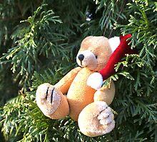 Christmas bear  by freshairbaloon