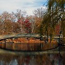 Autumn in Central Park, NY by jimmylu