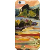 Whirlpool Mt. Tremper, NY iPhone Case/Skin