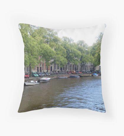Winding Way Throw Pillow