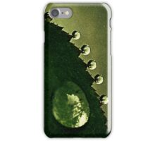 Leaf Drops iPhone Case/Skin