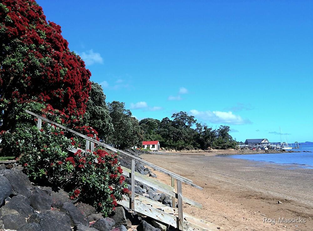 New Zealand's Christmas tree at Paihia Beach........! by Roy  Massicks