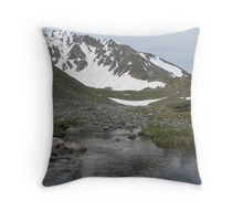 Snow Capped Torreys Peak Throw Pillow