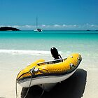 Tropical Breeze - Whitsunday Island by Barbara Burkhardt