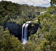 Stepping Down - Ebor Falls - NSW - Australia by Norman Repacholi