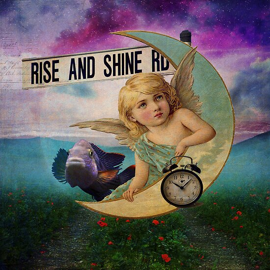 Rise and Shine by Suzanne  Carter