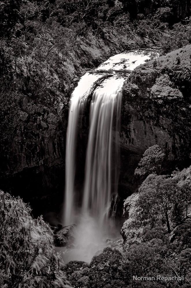 Long Drop - Ebor Falls - NSW - Australia by Norman Repacholi