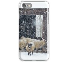 Winter Snow on Sheep iPhone Case/Skin