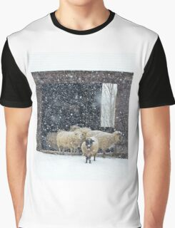 Winter Snow on Sheep Graphic T-Shirt