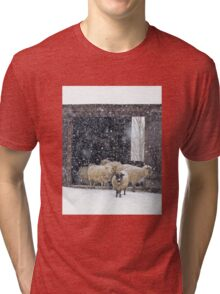 Winter Snow on Sheep Tri-blend T-Shirt