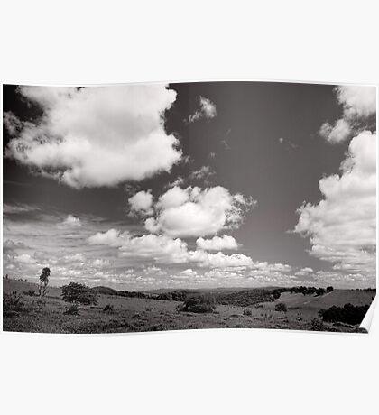 Valley of Clouds - Dorrigo - NSW - Australia Poster