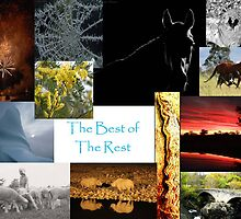 The Best of the Rest by MerriwaRinger
