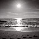 Sunrise stroll - Korora - NSW - Australia by Norman Repacholi
