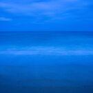 Into the blue - Korora - NSW - Australia by Norman Repacholi