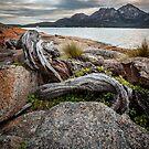 Tasmania by John Conway