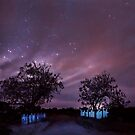 The gates by Robyn Lakeman