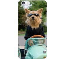 Norwich Terrier Drives a Car iphone case iPhone Case/Skin