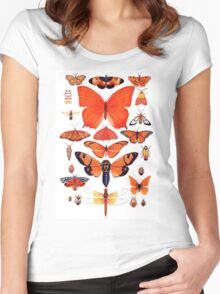 Orange Insect Collection Women's Fitted Scoop T-Shirt