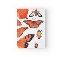 Orange Insect Collection Hardcover Journal