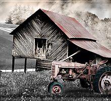 North Carolina Country by GrayA