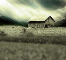 Blue Ridge Country by Gray Artus