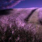 Heavens Path by Gray Artus