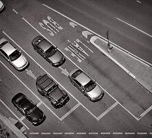 No Busses - Brisbane - QLD - Australia by Norman Repacholi