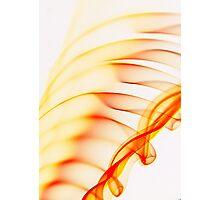 Smoked ribs Photographic Print