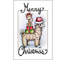 Merry Xmas from Alpaca and Cat Photographic Print
