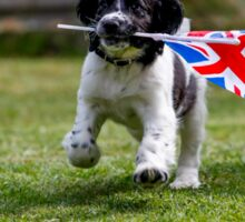 English Springer Spaniel Puppy with flag Sticker