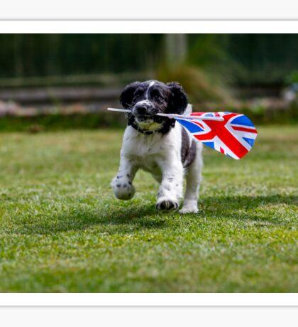 English Springer Spaniel Puppy with flag Sticker