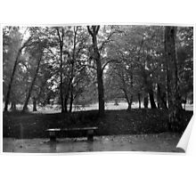 Lonely bench at Chenonceau  Poster